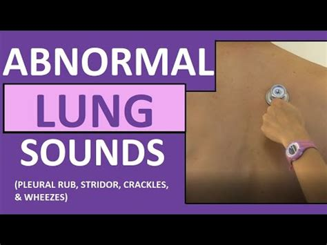 Lung Sounds (Abnormal) Crackles (Rales) Wheezes (Rhonchi